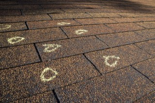 Roofing Maintenance in Pickering